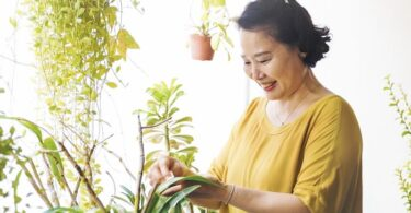 Mujer y plantas naturaleza en casa