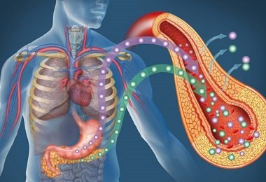 Cómo prevenir la diabetes tipo 2 desde la medicina funcional