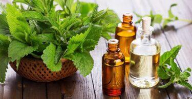 Aceite esencial menta para aliviar tos