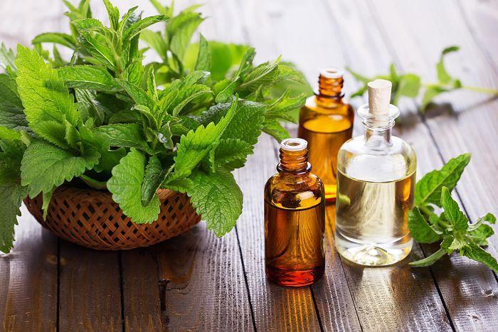 Aceite esencial de menta para aliviar tos