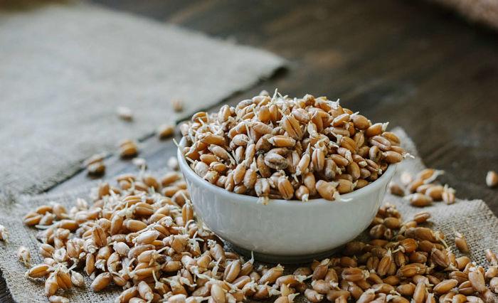 Conociendo los beneficios de agregar germen de trigo a la dieta