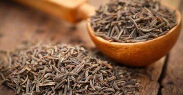 Beneficios de las semillas de alcaravea