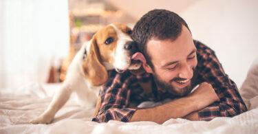Lecciones de vida que podemos aprender de los perros