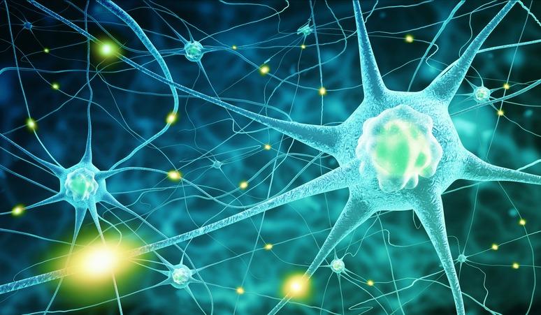 Mejora la calidad de tus pensamientos aumentando la dopamina en el cuerpo