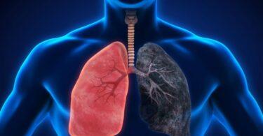 Problemas deficiencia vitamina c fumadores
