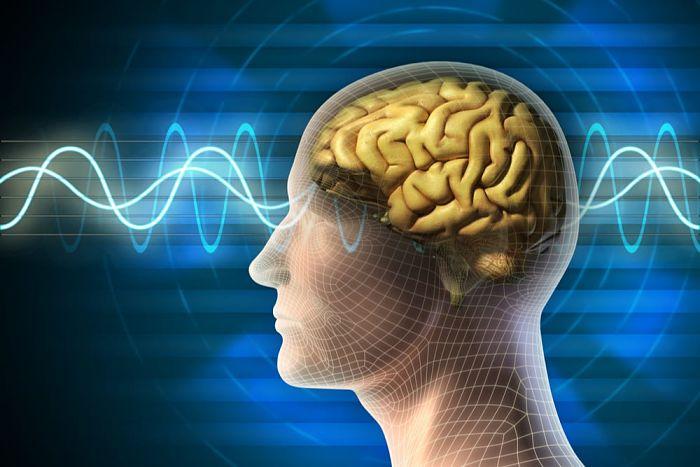 Conociendo el sistema glinfático para limpiar el cerebro