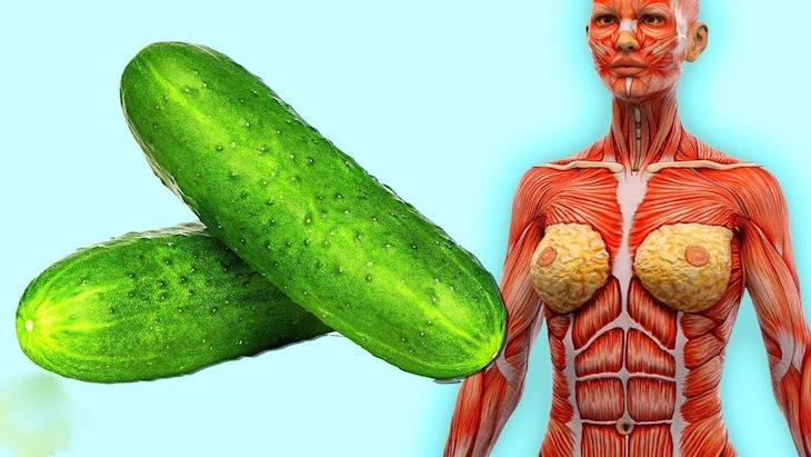 efecto secundario en la salud del cuerpo de los pepinos