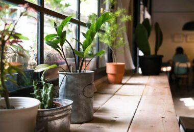 Un hogar más sostenible y ecológico