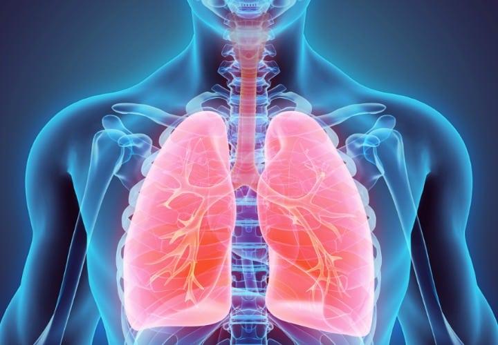 pulmones fuertes y saludables