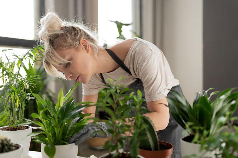 Mujer cuidando y podando las plantas de interior