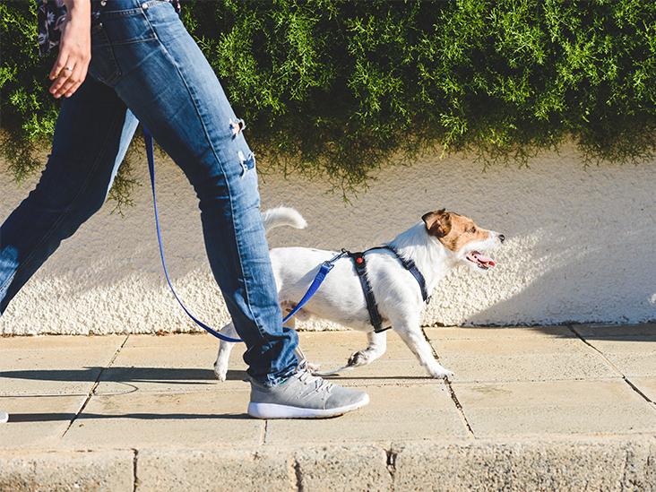 Una mujer caminando con su mascota