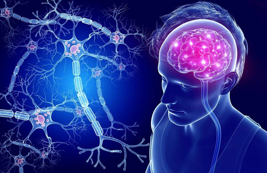 Los cambios que evitan el deterioro cognitivo y la demencia en personas con padecimiento de diabetes